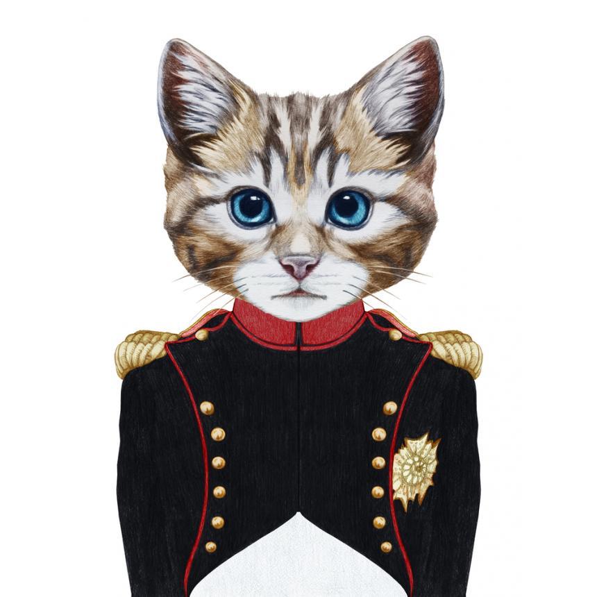 Πίνακας Γάτα στρατηγός