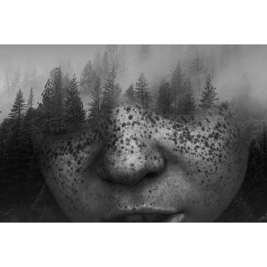 Πίνακας σε καμβά Βλέποντας το δάσος