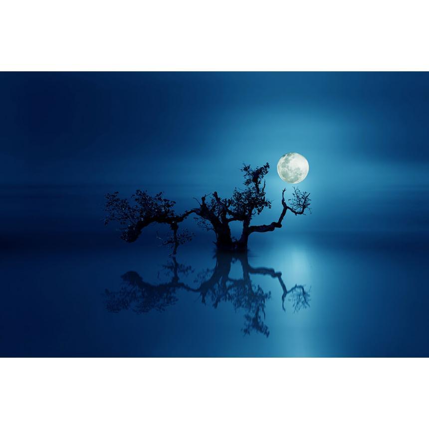 Πίνακας Φεγγάρι