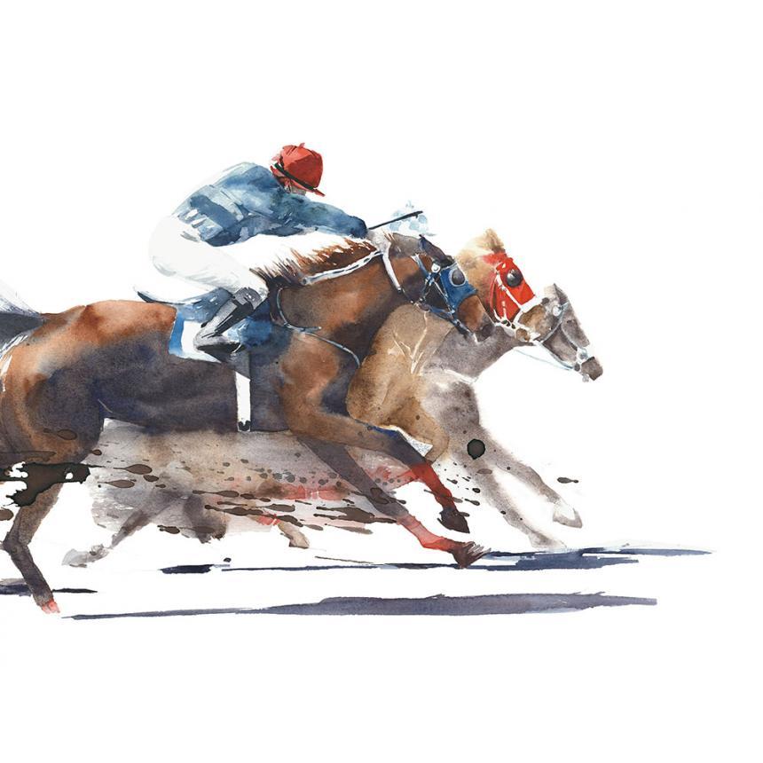 Αναβάτης σε Άλογο