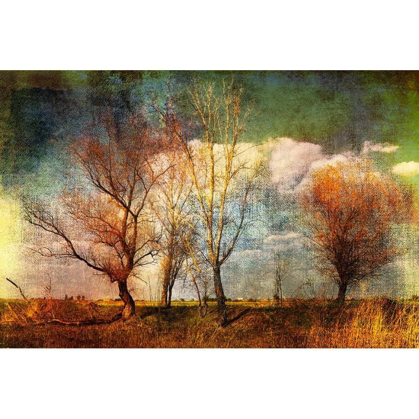 Πίνακας Φθινοπωρινά δέντρα