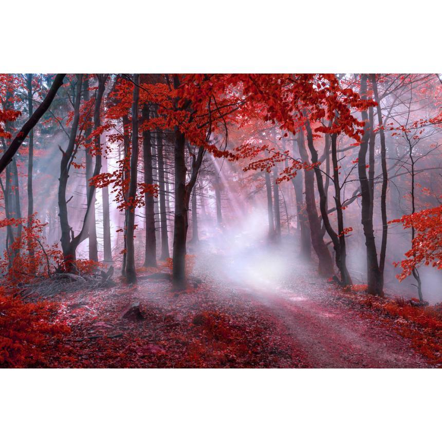 Κόκκινο δάσος