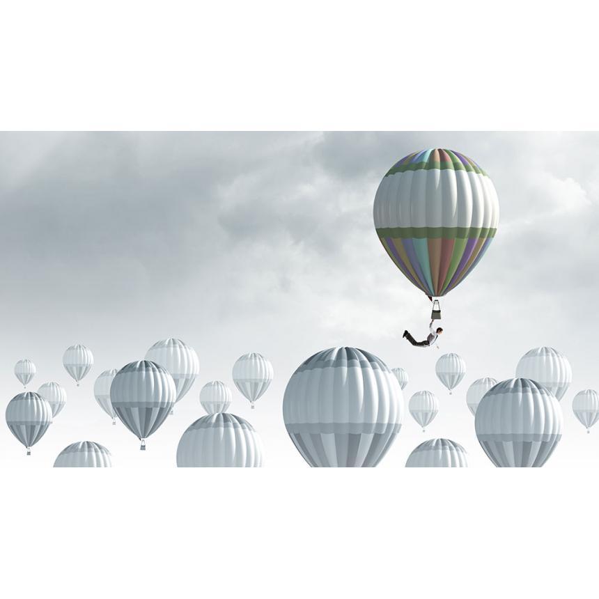 Πίνακας Αερόστατο σε συννεφιά