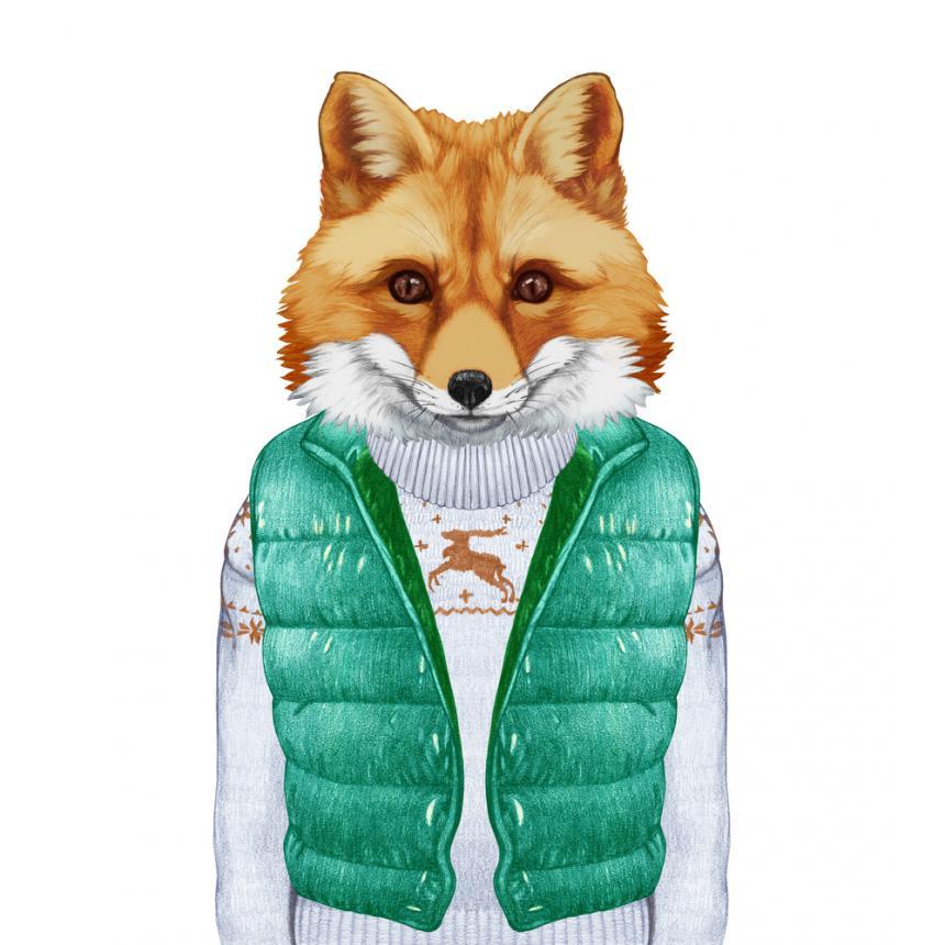 Πίνακας Αλεπού με πράσινο αμάνικο