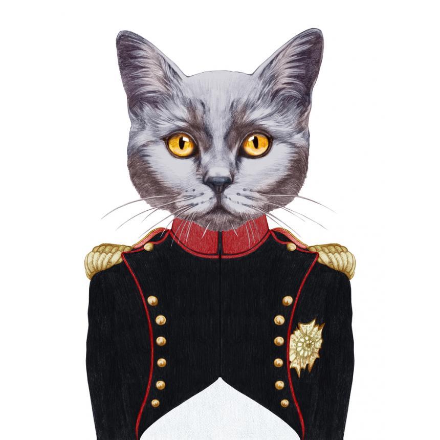 Πίνακας Γάτα αξιωματικός