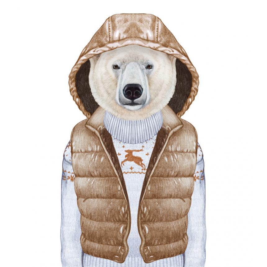 Πίνακας Λευκή αρκούδα με καφέ αμάνικο