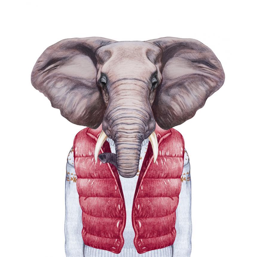 Πίνακας Ελέφαντας με κόκκινο αμάνικο