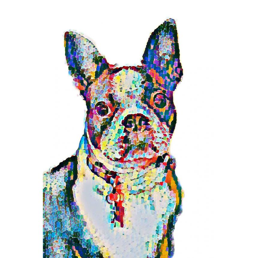 Πίνακας ζωγραφικής Σκύλος Multicolor