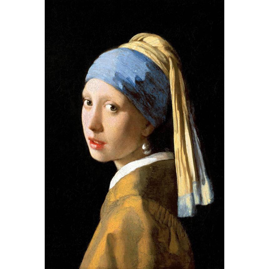 Πίνακας Johannes Vermeer - Girl With A Pearl Earring