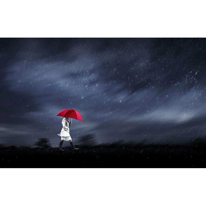 Πίνακας Ομπρέλα στη βροχή