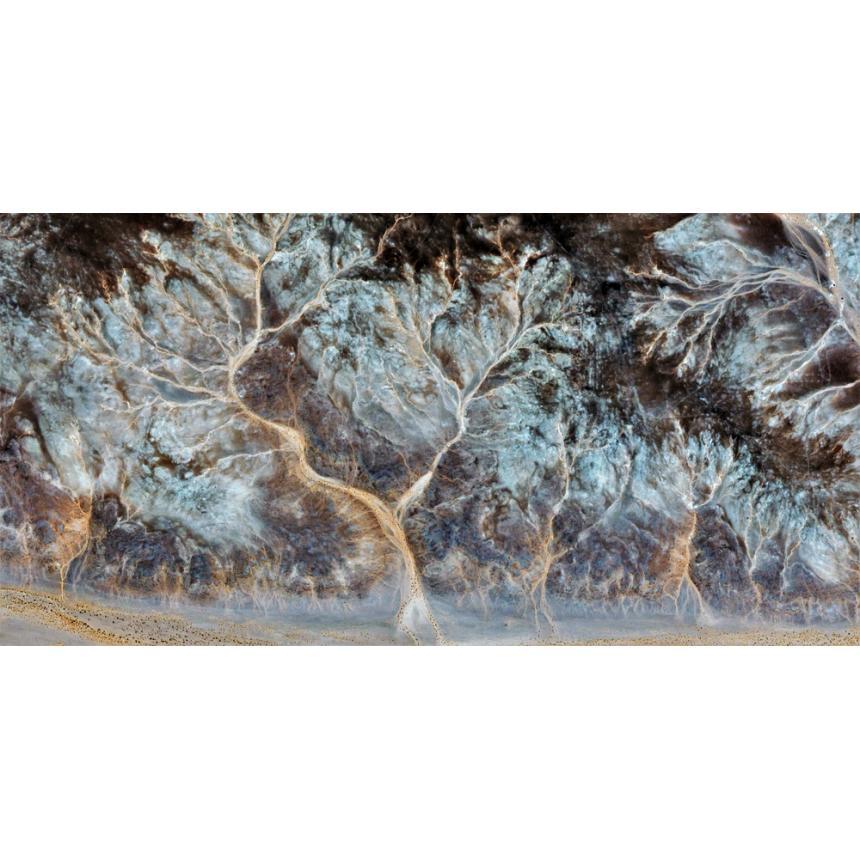 Πίνακας Abstract κήπος δέντρων