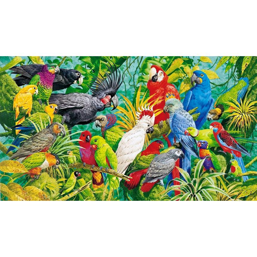 Παπαγάλοι 2