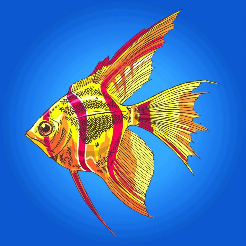 Πίνακας Ψάρια 4