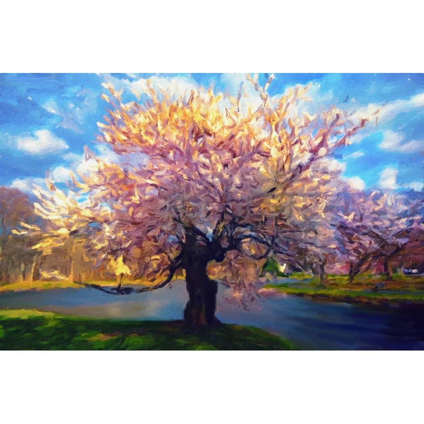 Πίνακας Τοπίο δέντρο