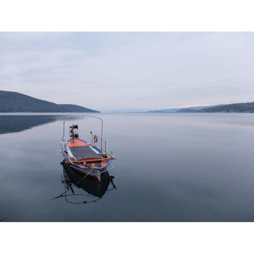 Πίνακας Τοπίο με βάρκα