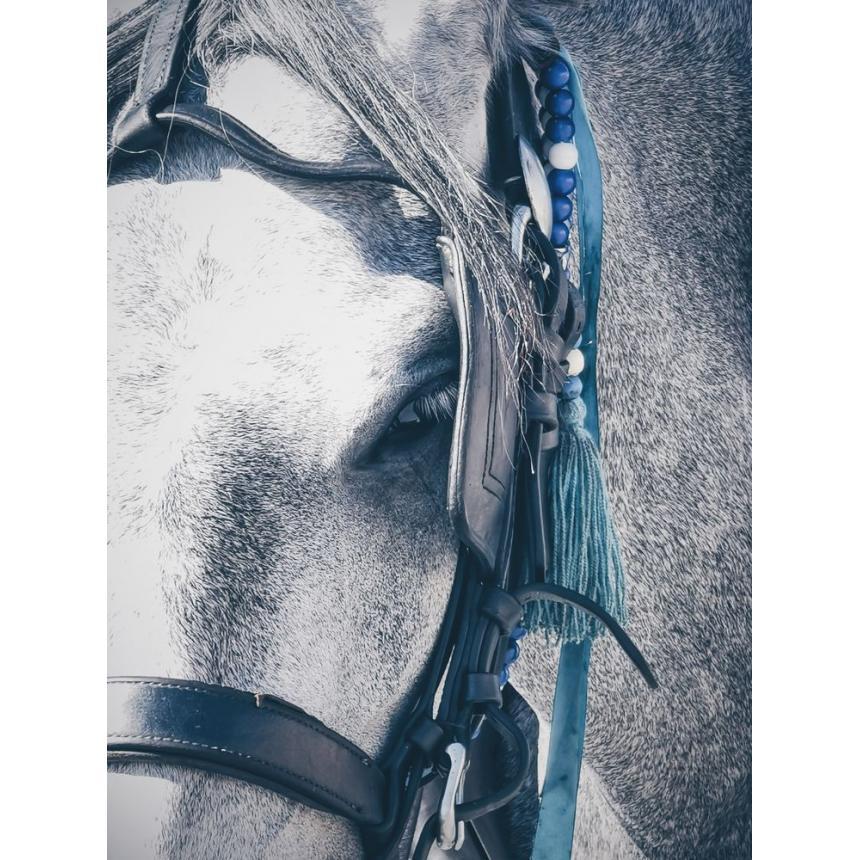 Πίνακας Άλογο