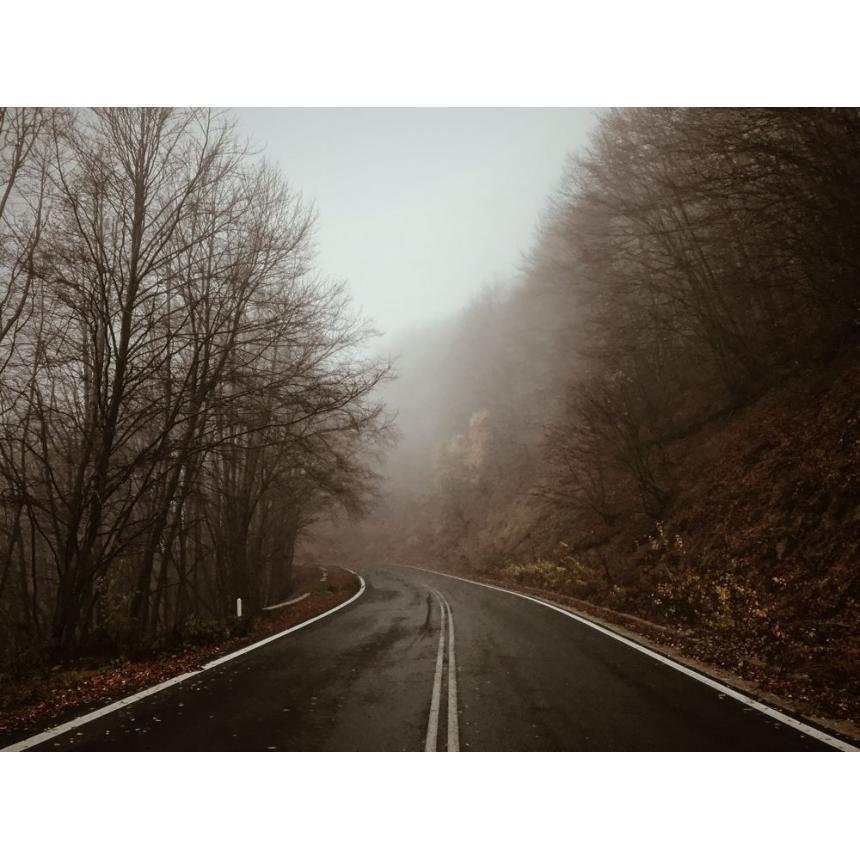 Πίνακας Τοπίο με ομίχλη