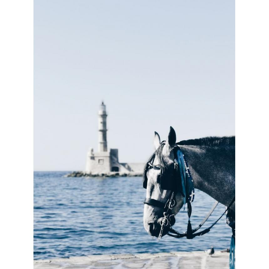 Πίνακας Άλογο στη θάλασσα