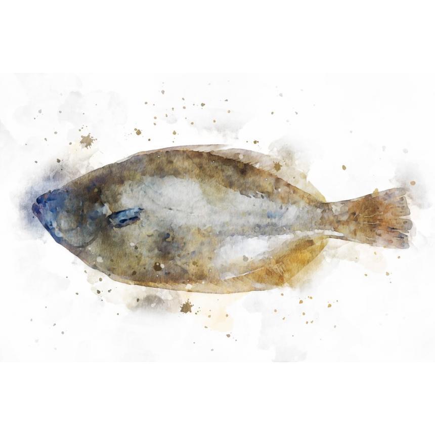 Πίνακας Ψαράκι