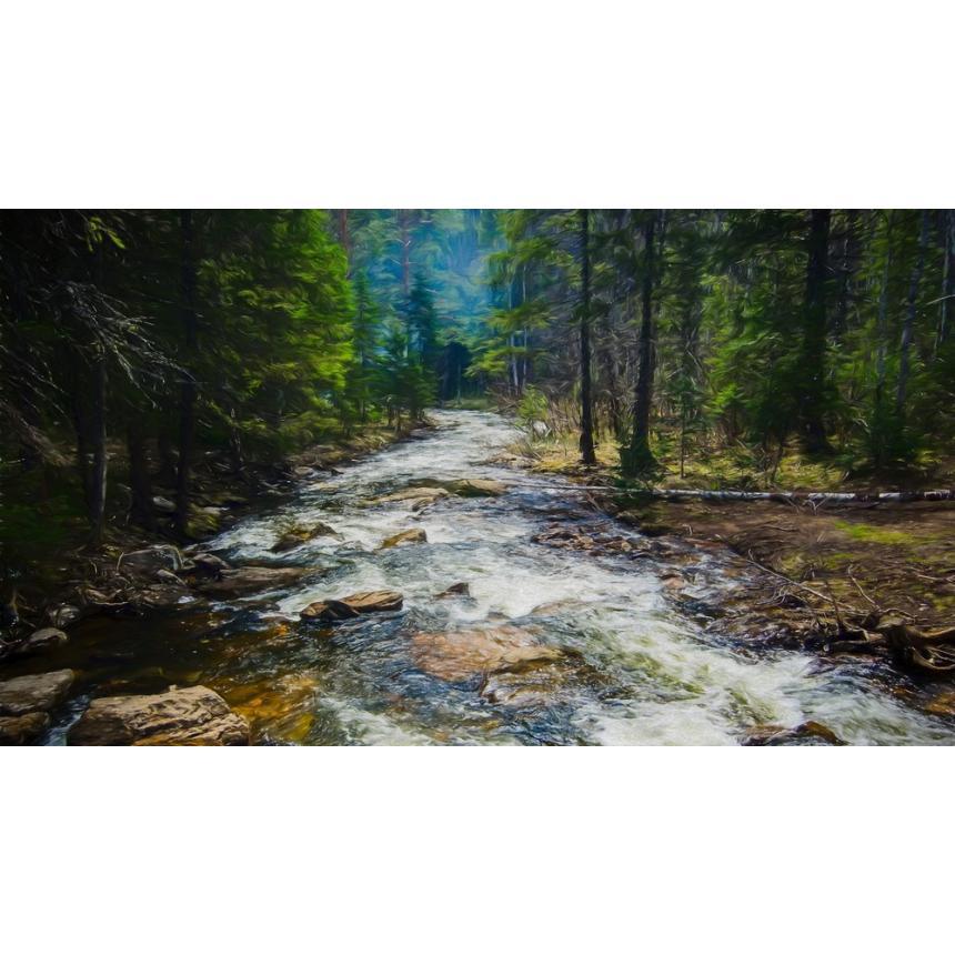 Πίνακας Δάσος
