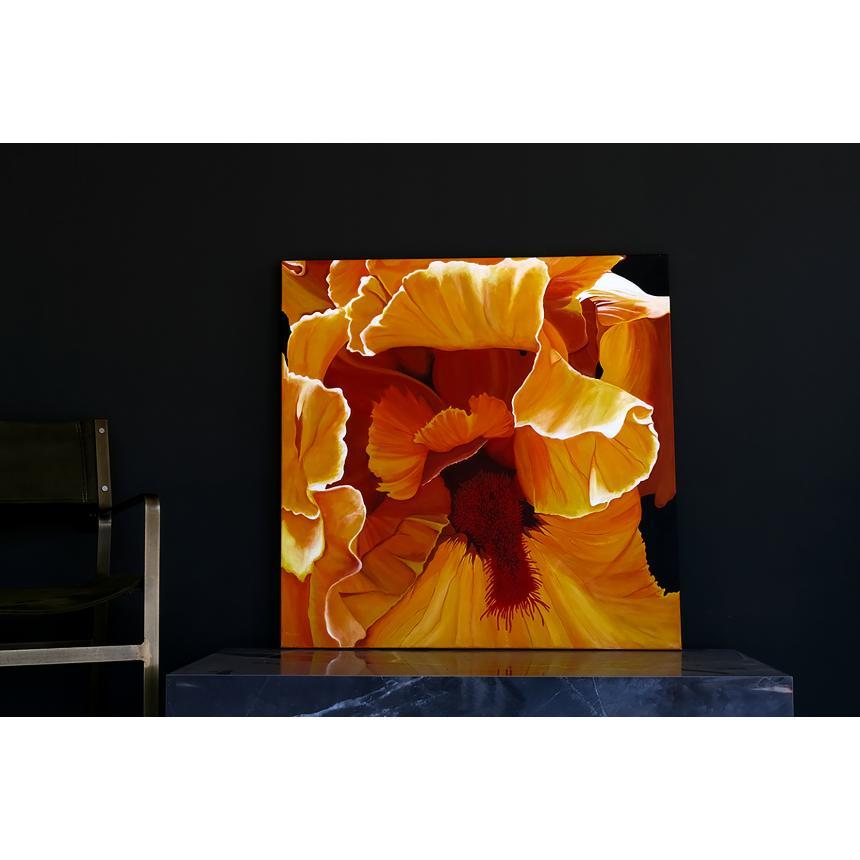 Πίνακας Ιβίσκος ''Hibiscus''