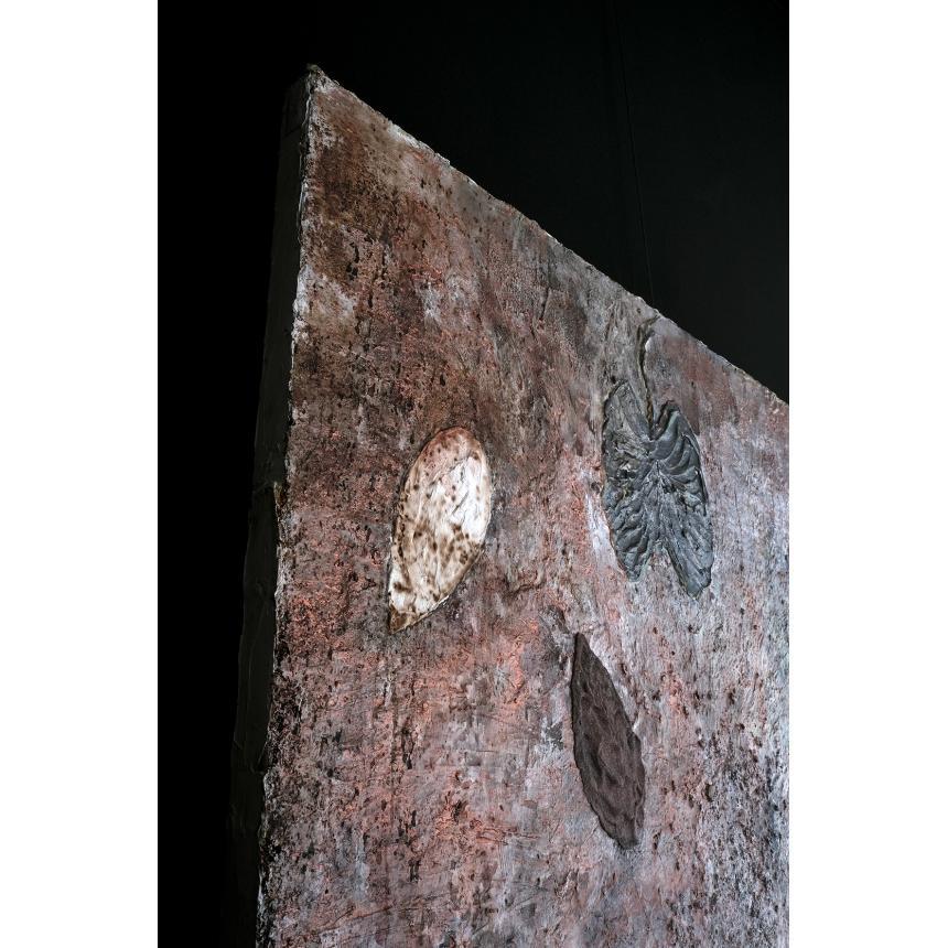 Πίνακας Απολιθωμένα φύλλα στη γη